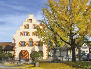 Friesenheim